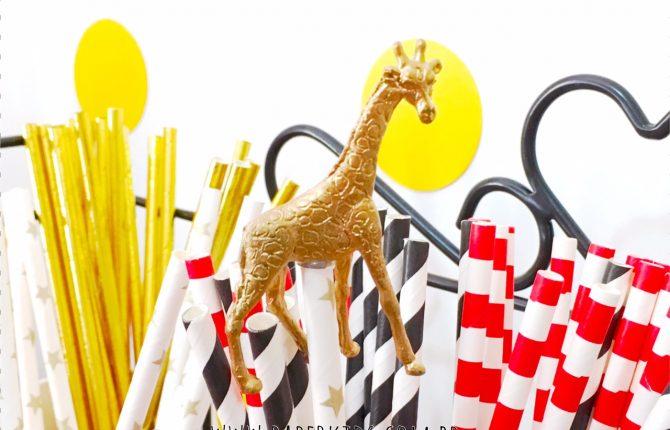 diy-festa-circo-animais